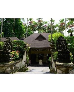 Ubud in Bali